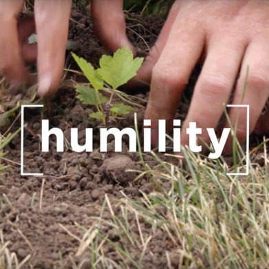 """St. Bernard of Clairvaux quote on humility: """"The three most important virtues are humility, humility, and humility."""""""
